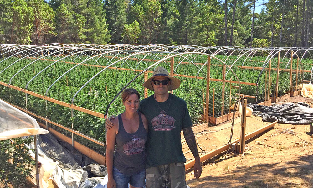 Ridgeline Farms: The Cannabis Growers That Brought the Emerald Cup Back to Humboldt
