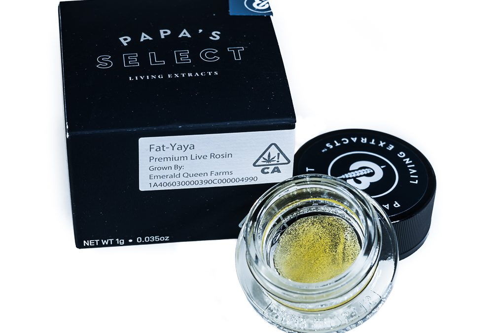 Fat-Yaya Premium Live Rosin by Papa's Select