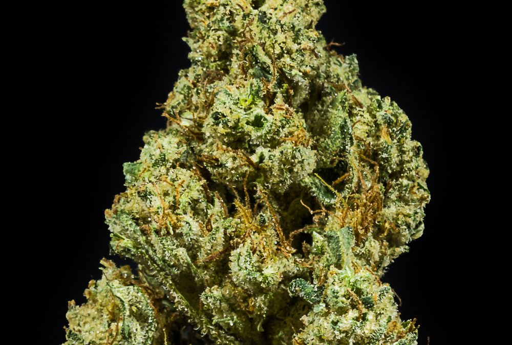 Sour G by Humboldt Redwood Healing
