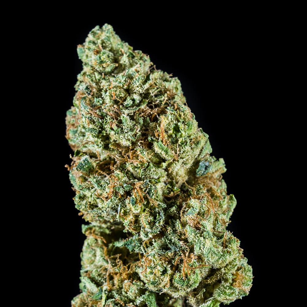 Orange 43 by Local Cannabis Company (Bosim 1628 Management Company, LLC)