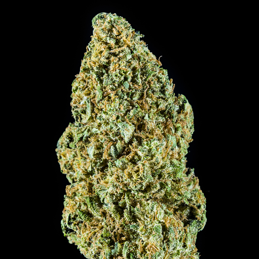 """Blueberry Muffin - Flower by The Honeydew Creek Original Family Humboldt (THC OF Humobldt), a:1:{i:0;s:25:""""The Humboldt Seed Company"""";}"""