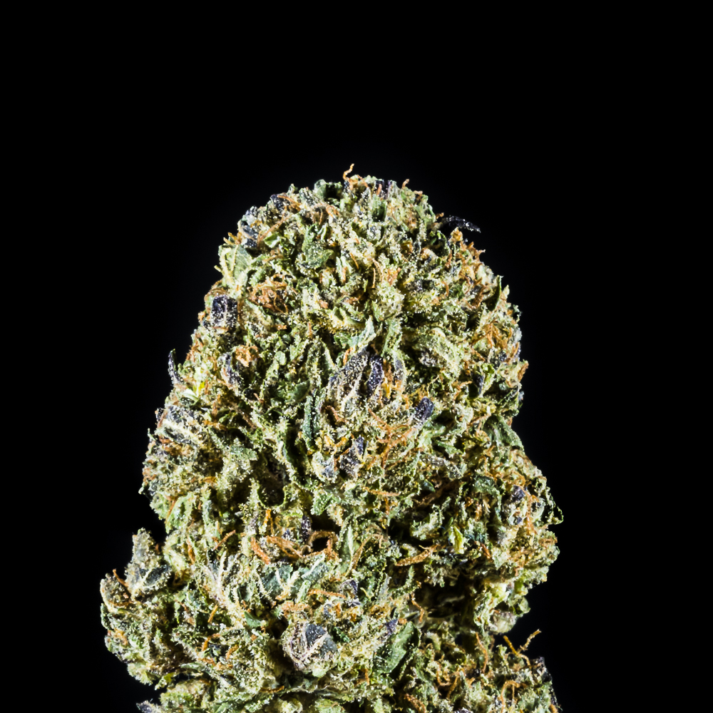 """Vanilla Frosting - Flower by The Honeydew Creek Original Family Humboldt (THC OF Humobldt), a:1:{i:0;s:25:""""The Humboldt Seed Company"""";}"""