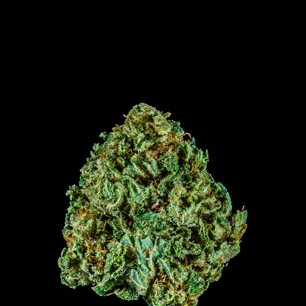 Mountain Medicine by Hogwash Pharms