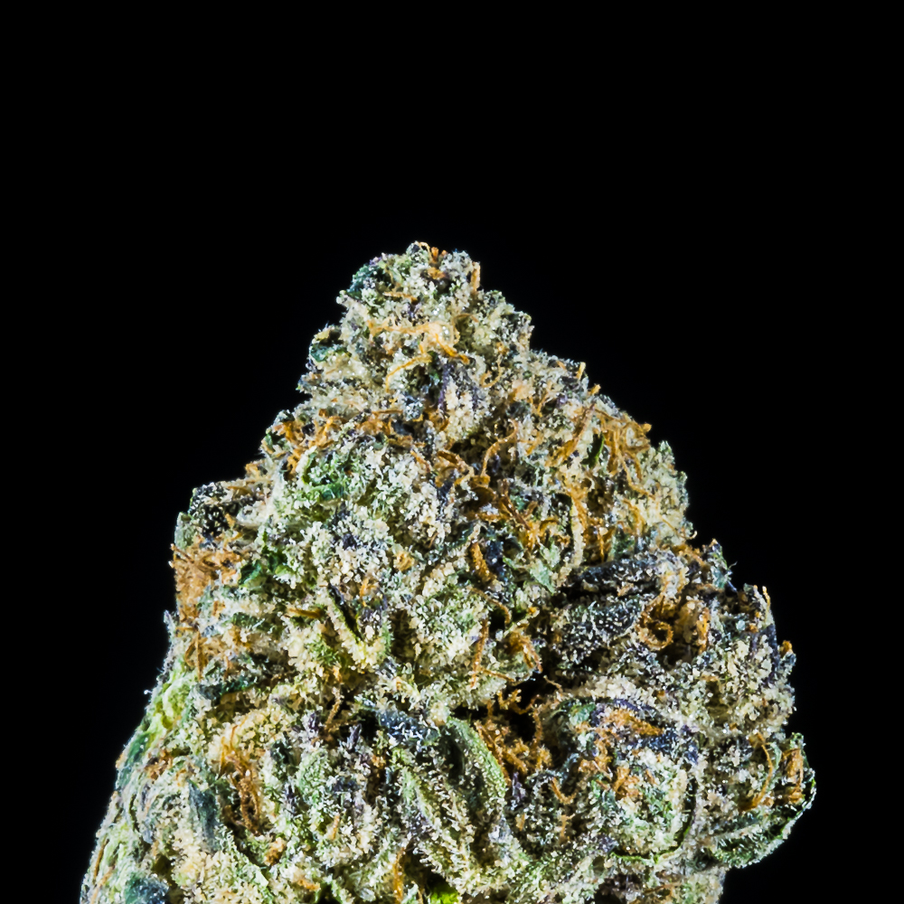 Guava Cake by SF Canna by ERB