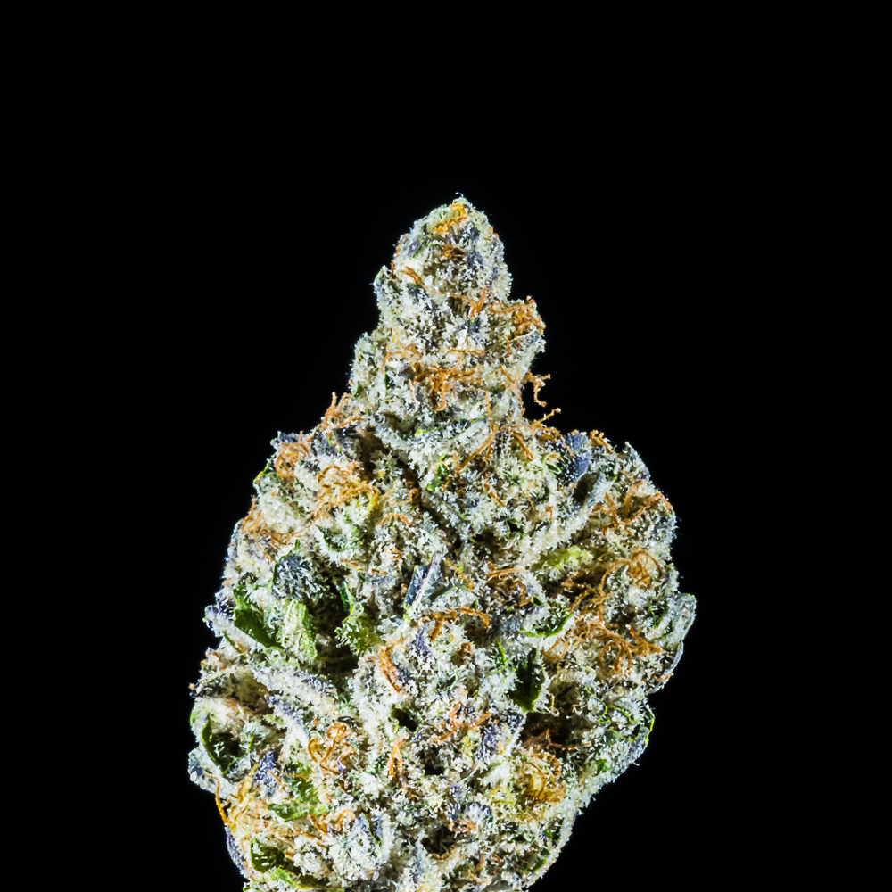 """Milk & Muffins by Sovereign, a:1:{i:0;s:21:""""Humboldt Seed Company"""";}"""