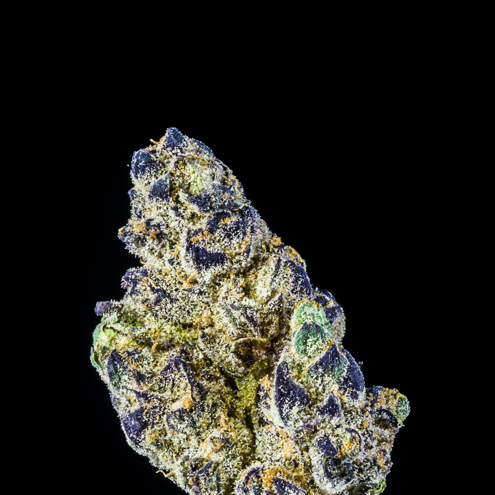 Mamba 24 by California Organic Treatment Center, Inc