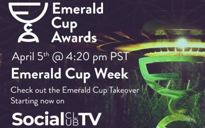 Emerald Cup Opening 4:5:21